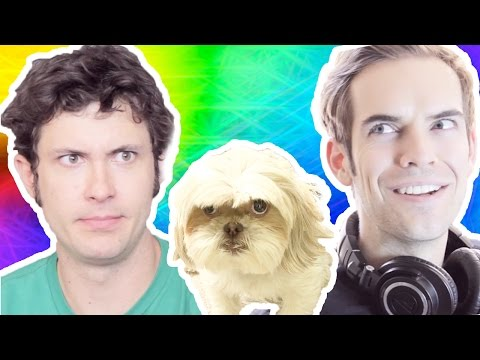 GRYPHON the TALKING DOG (feat. JACKSFILMS)