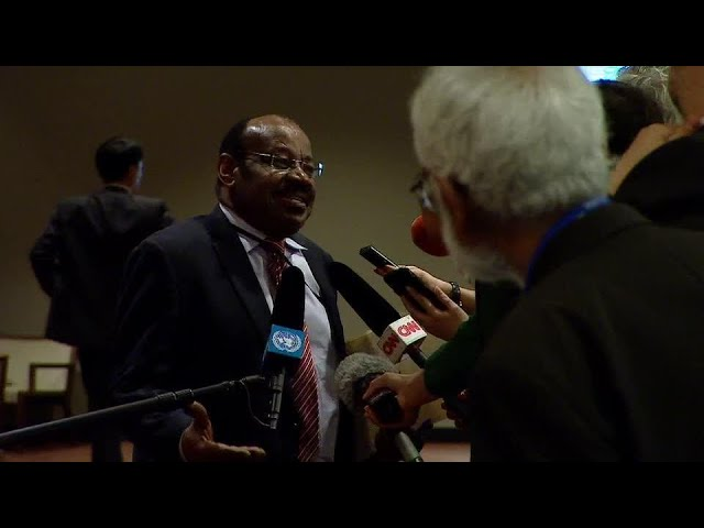 Equatorial Guinea on the situation in Syria - Media Stakeout (23 Feb 2018)