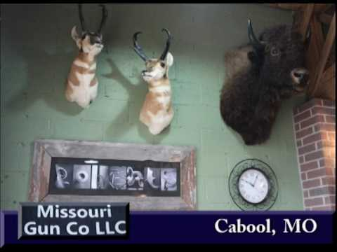 Cabool Missouri's Missouri Gun Company on Our Story's the Celebrities