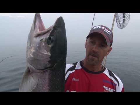 Kinns Sport Fishing.
