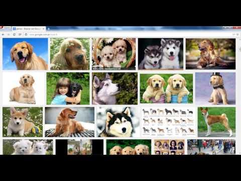 Como Descargar Una Imagen De Google Chrome Y Ponerla De Fondo De Pantalla