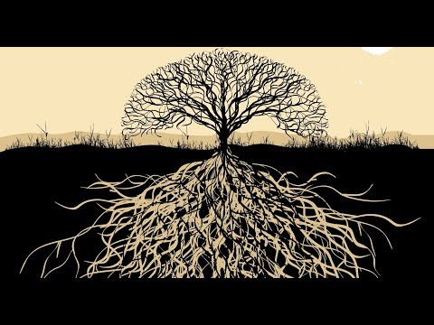 Medicinal Vibes[Dub / Psydub / Psybient Music Mix]