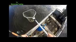 рыбалка в томской тайге на диком озере