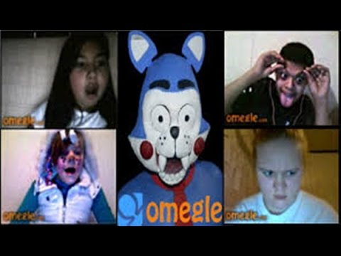 Cat sugar the cat went on omegle five nights at freddys youtube