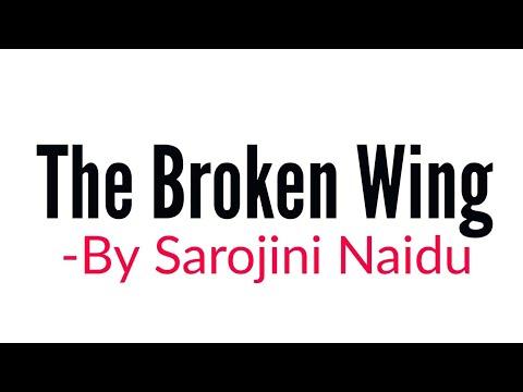 The Broken wing: Poem by Sarojini Naidu Summary Analysis
