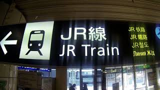 Sapporo (New Chitose) Airport to Otaru by train