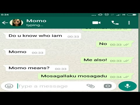 Funny Chat Conversation