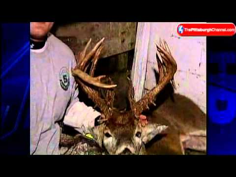 Hunter Bags 43-Point Buck In Westmoreland County