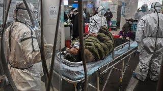 В Россию пока не добрался. Последние новости о коронавирусе