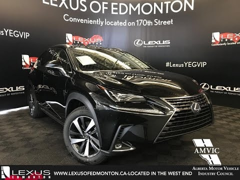 Black 2018 Lexus NX 300h Executive Package Walkaround Review Downtown Edmonton Alberta