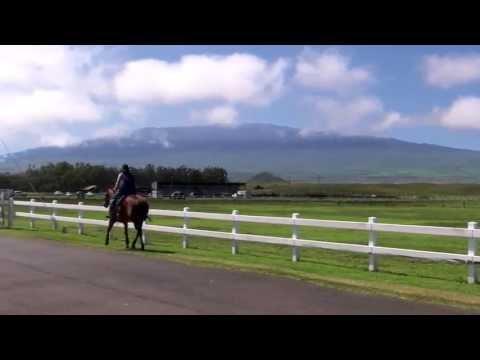 "ThruJimsEyes - ""Hawaii:  Driving the high road from Kona to Waimea"""