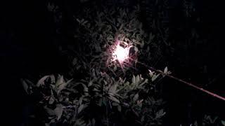 Download Video Berburu perkutut malam hari dengan alat sederhana MP3 3GP MP4