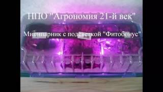 Парничок для рассады с подсветкой на фитодиодах «Фитобонус», гарантийное обслуживание - 1 год(Парничок для рассады с подсветкой на фитодиодах «Фитобонус» от НПО
