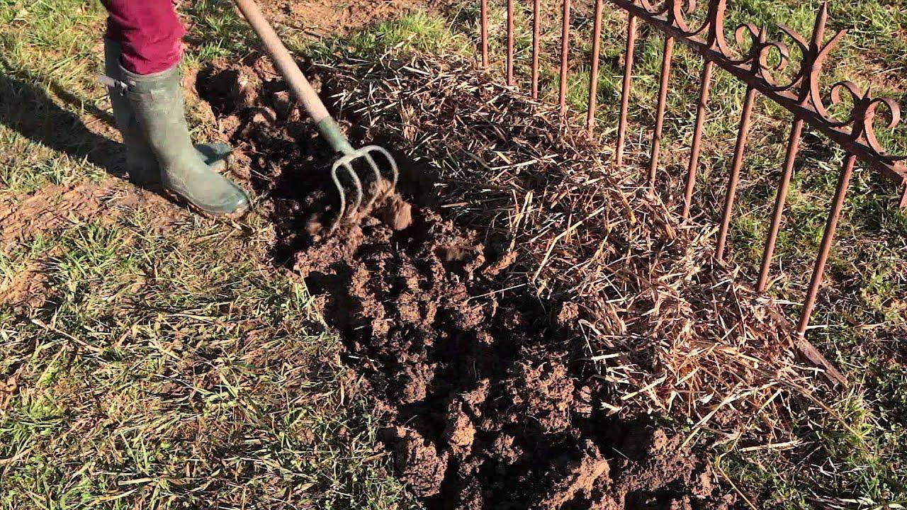 Quoi Planter Dans Une Terre Argileuse comment alléger un sol lourd