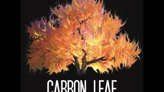 Watch Carbon Leaf What Have You Learned video