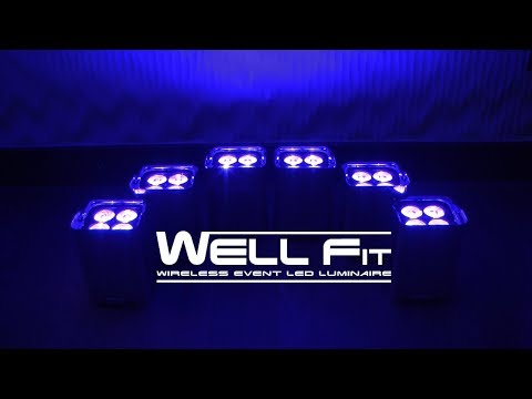 Demo: Chauvet Professional WELL Fit