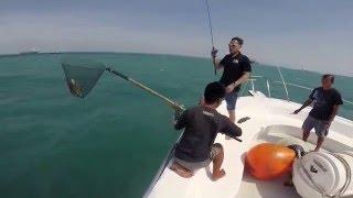 Ocean Jumanji Singapore Fishing Trip Feb...