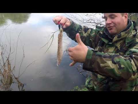 Рыбалка на Клязьме  Октябрь 2017.