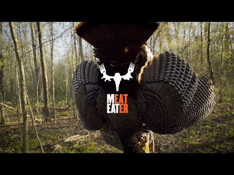 Spring Turkey Hunting With MeatEater's Janis Putelis