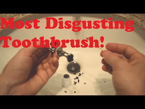 why-you-should-clean-philips-sonicare-brushes---review