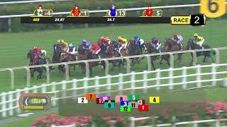 Vidéo de la course PMU PRIX ELITE INVINCIBLE 2018 STAKES - RESTRICTED MAIDEN