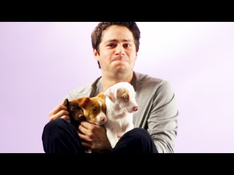 download Dylan O'Brien From The Maze Runner Plays With Puppies