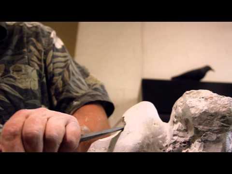 Vingt ans et des poussières... | ASPM-Sculpteurs sur pierre
