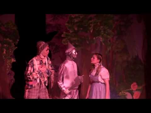 Wizard of Oz tinman song by Michelle Card.wmv