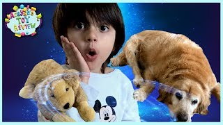 Pretend Play | Hide and Seek | Toy Dog MAGICALLY Turns into A Real Dog! Arayan's ToysReview