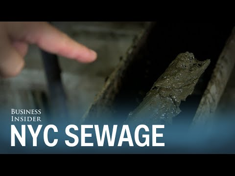 Here's where New York City's sewage really goes