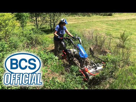 BCS Flail Mower Clearing Brush