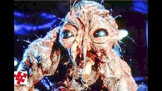 «Муха» / Джефф Голдблюм, Джина Дэвис /ужасы. фантастика / трейлер 1986