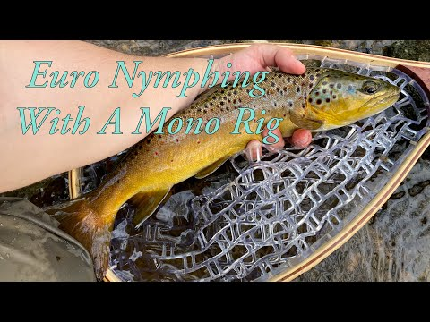 Euro Nymphing With A Mono Rig | PA Wild Brown Trout