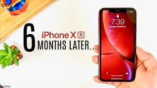 The iPhone XR - 6 Months Later