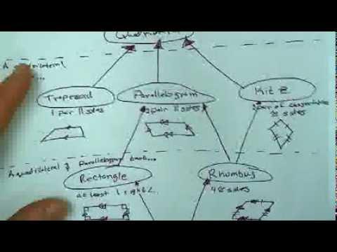 Geo 6 4 Quadrilateral Hierarchy