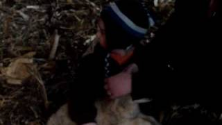 Ryan And The Easter Lamb