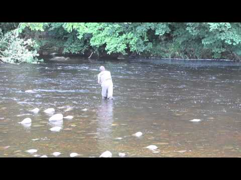 Fly Fishing For Trout @ Bolton Abbey North Yorkshire Harry Moane 11/07/2011