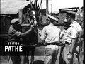 South African Horses In Army (1945)