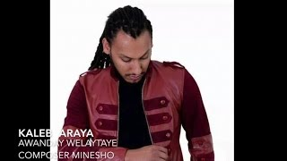 Kaleb Areya - Adonay Welaytaye - (Official Audio Video) - New Ethiopian Music 2015