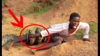 Repeat youtube video Top 10 Giant Anaconda Attacks Human