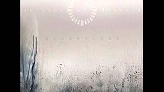 Animals as Leaders - Espera