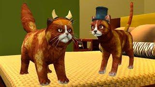 СИМУЛЯТОР Маленького КОТЕНКА #23 Челлендж с животными и котиками #ПУРУМЧАТА