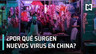 ¿por Qué Surgen Nuevos Virus En China? | Covid-19