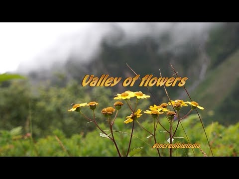 Valley of flowers , Uttarakhand, India, UNESCO World Heritage site