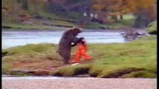John West Salmon Bears Tango Fight
