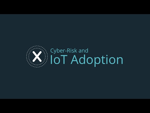 Cyber-Risk and IoT Adoption