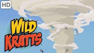 Wild Kratts - Tornadoes and Thorns: A Prairie Adventure