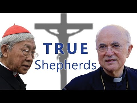 CHINESE CATHOLICS BETRAYED: Diocesan Priest Stands with Viganò and Cardinal Zen