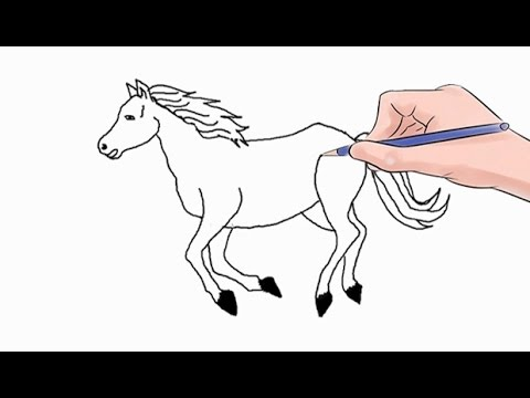 Easy Drawings Of Horses