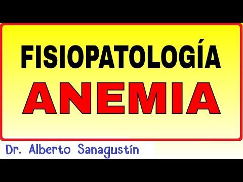 Fisiopatología de la anemia #Hematología